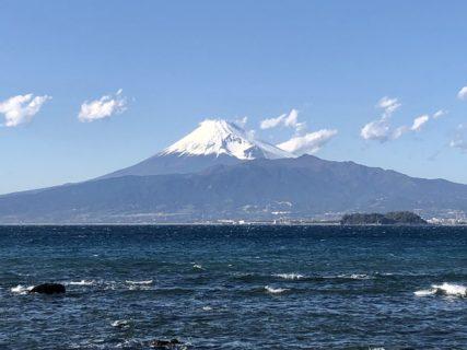 富士山の麓が栽培地